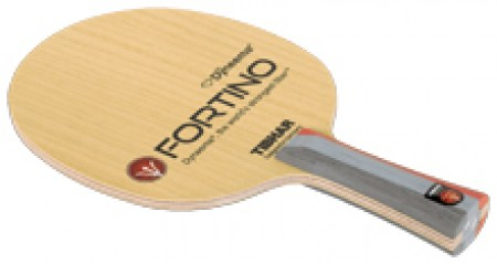 FORTINO PERFORMANCE
